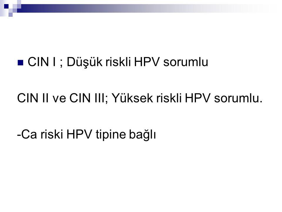 CIN I ; Düşük riskli HPV sorumlu