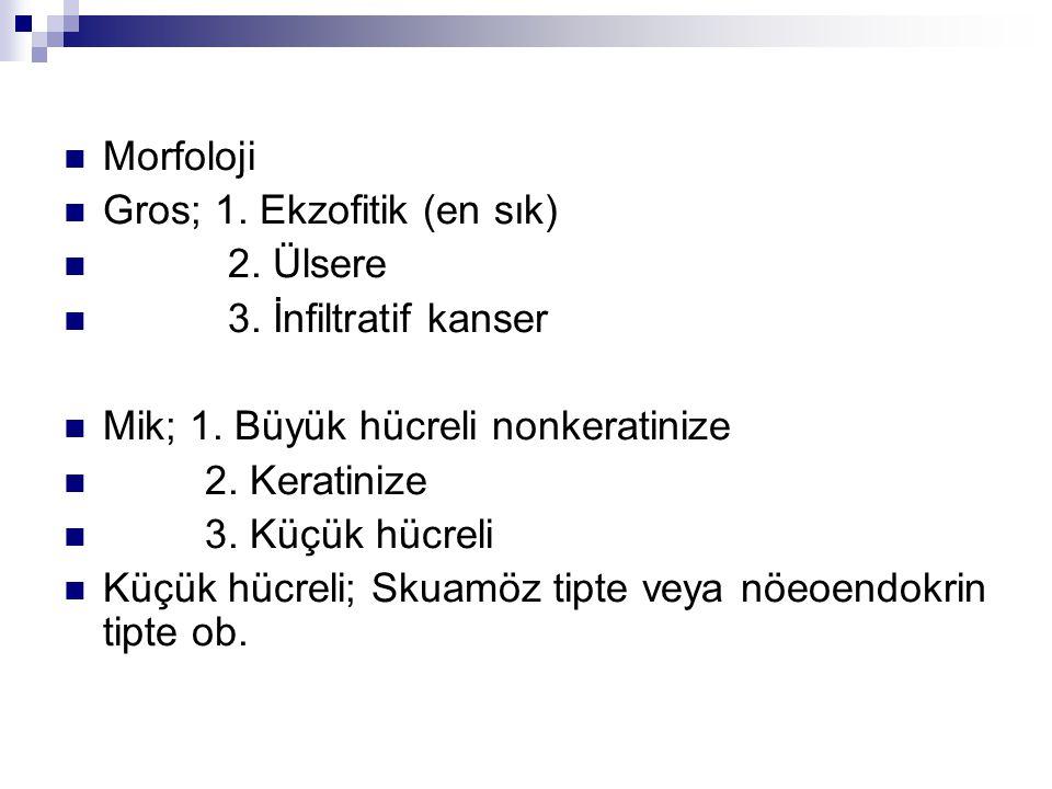 Morfoloji Gros; 1. Ekzofitik (en sık) 2. Ülsere. 3. İnfiltratif kanser. Mik; 1. Büyük hücreli nonkeratinize.