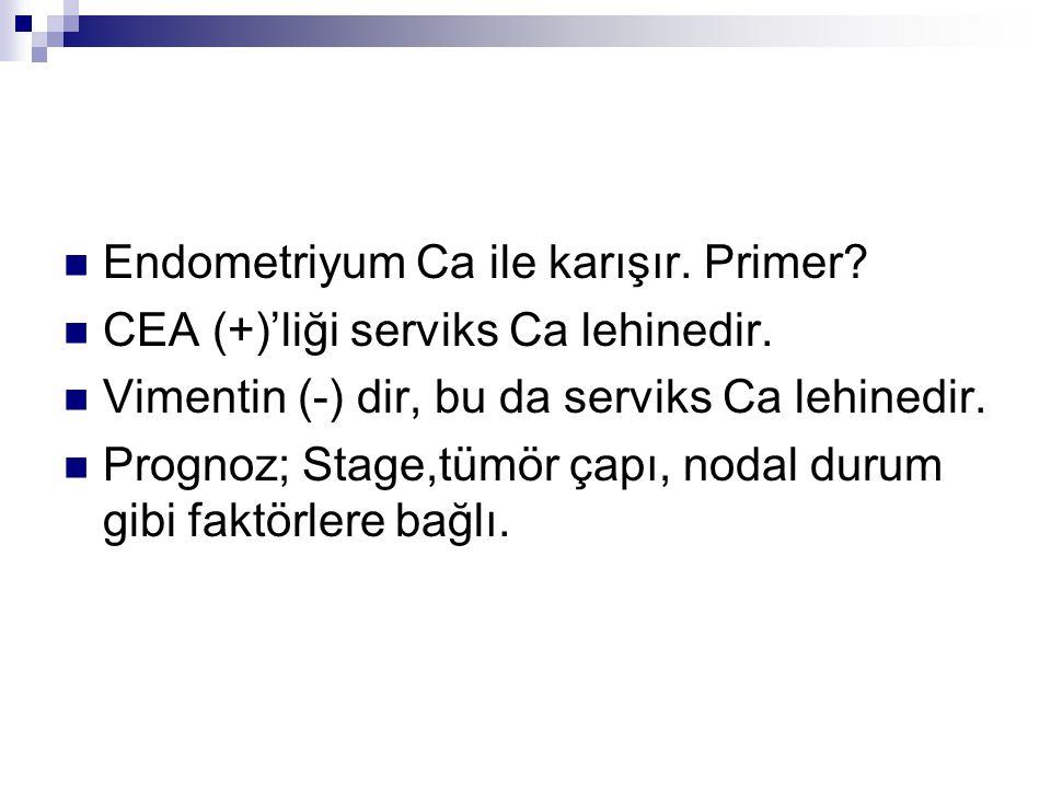Endometriyum Ca ile karışır. Primer