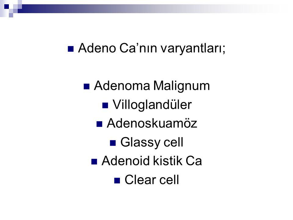 Adeno Ca'nın varyantları;