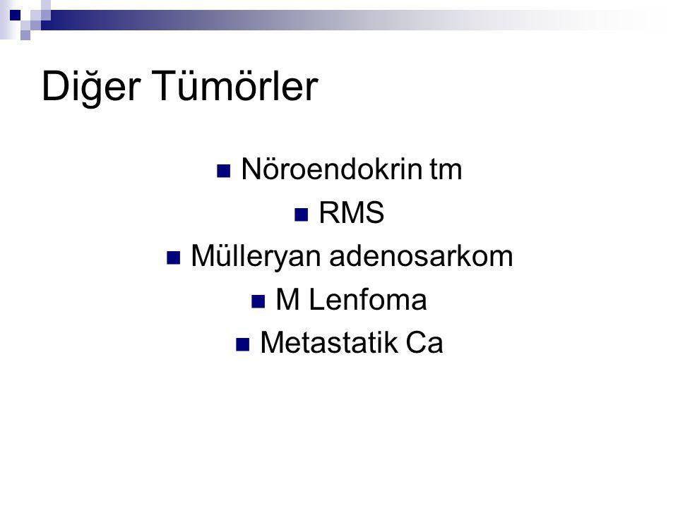 Mülleryan adenosarkom