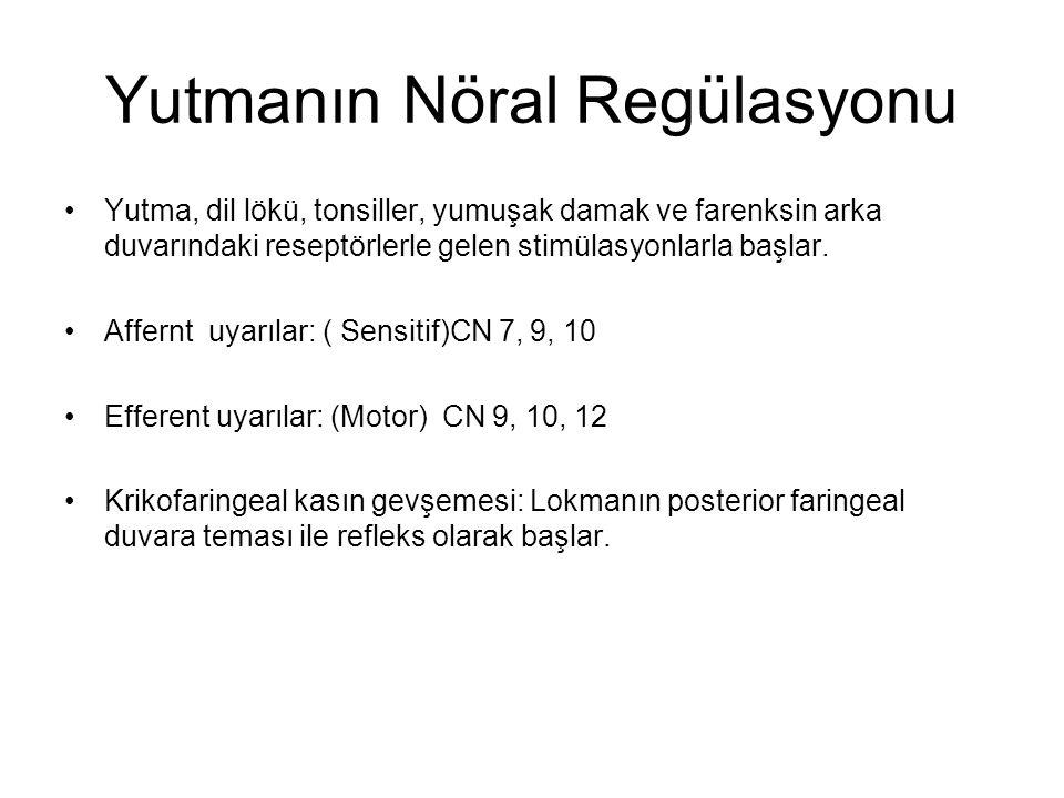 Yutmanın Nöral Regülasyonu