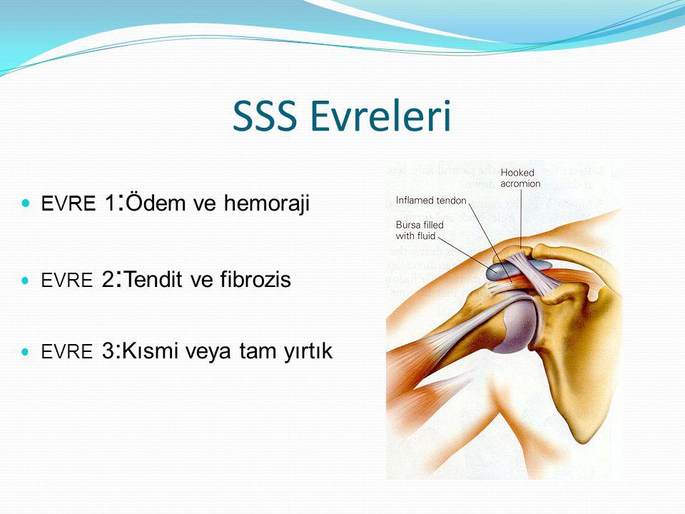 SSS Evreleri EVRE 1:Ödem ve hemoraji EVRE 2:Tendit ve fibrozis