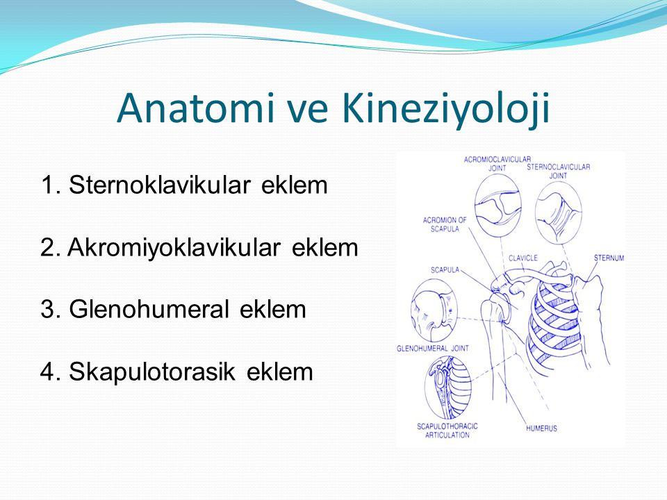 Anatomi ve Kineziyoloji