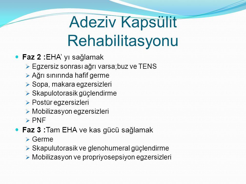 Adeziv Kapsülit Rehabilitasyonu