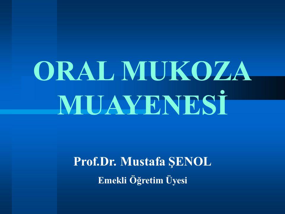 ORAL MUKOZA MUAYENESİ Prof.Dr. Mustafa ŞENOL Emekli Öğretim Üyesi 1