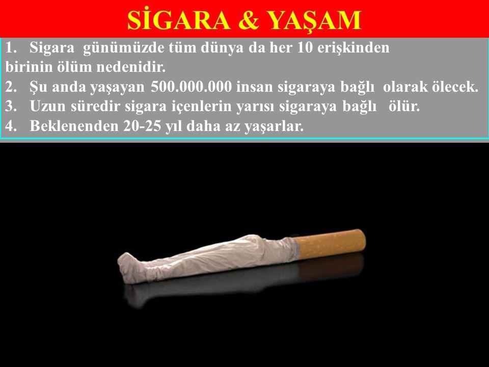 SİGARA & YAŞAM Sigara günümüzde tüm dünya da her 10 erişkinden