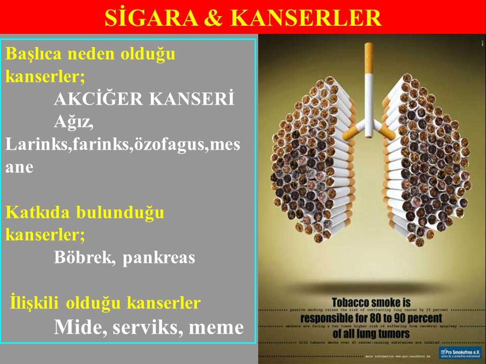 SİGARA & KANSERLER Mide, serviks, meme Başlıca neden olduğu kanserler;