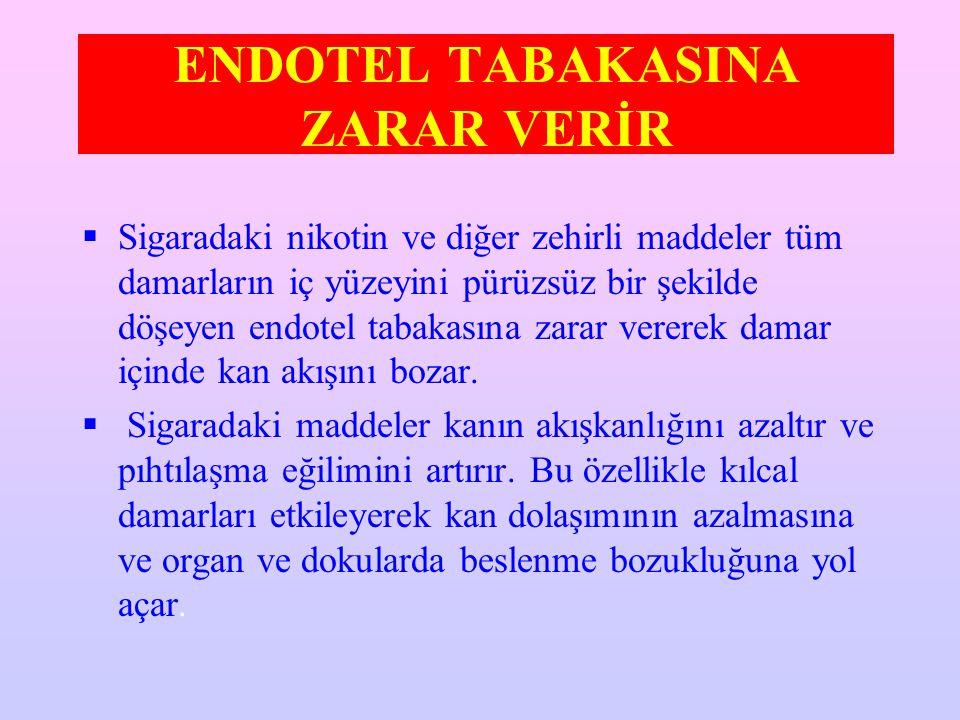 ENDOTEL TABAKASINA ZARAR VERİR