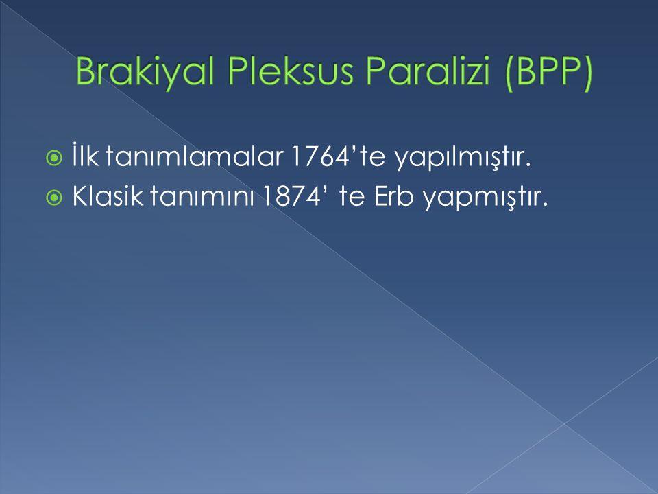 Brakiyal Pleksus Paralizi (BPP)