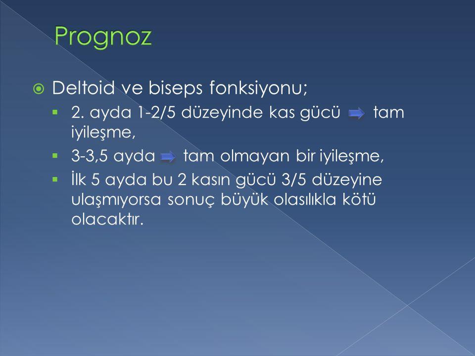 Prognoz Deltoid ve biseps fonksiyonu;