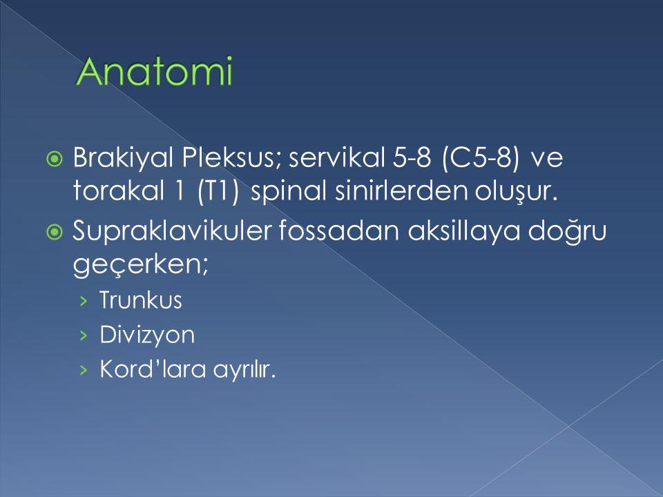 Anatomi Brakiyal Pleksus; servikal 5-8 (C5-8) ve torakal 1 (T1) spinal sinirlerden oluşur. Supraklavikuler fossadan aksillaya doğru geçerken;