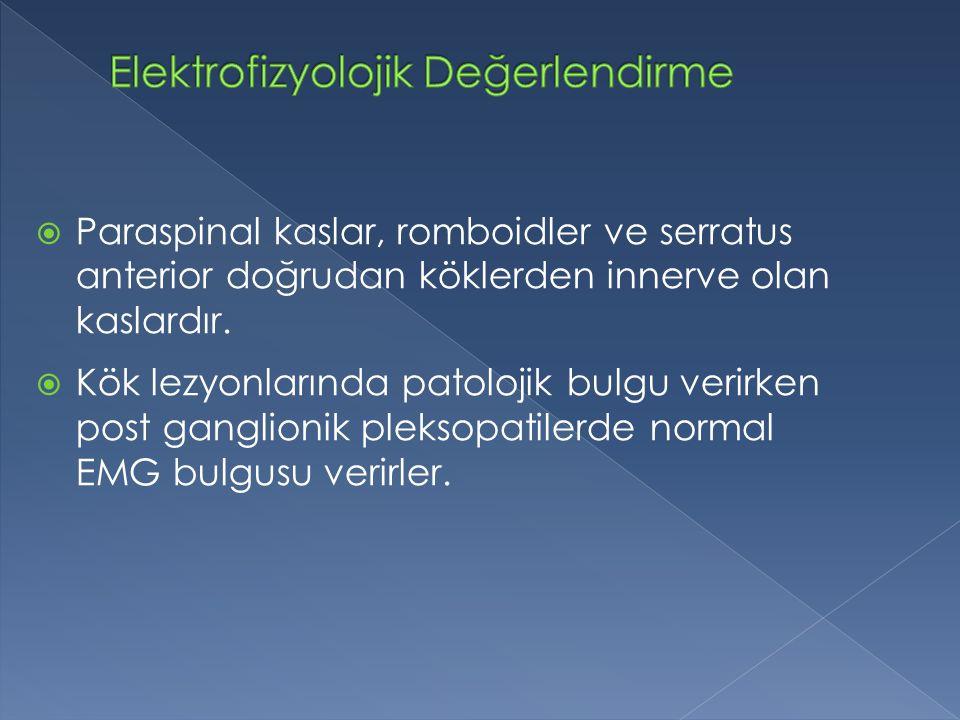 Elektrofizyolojik Değerlendirme
