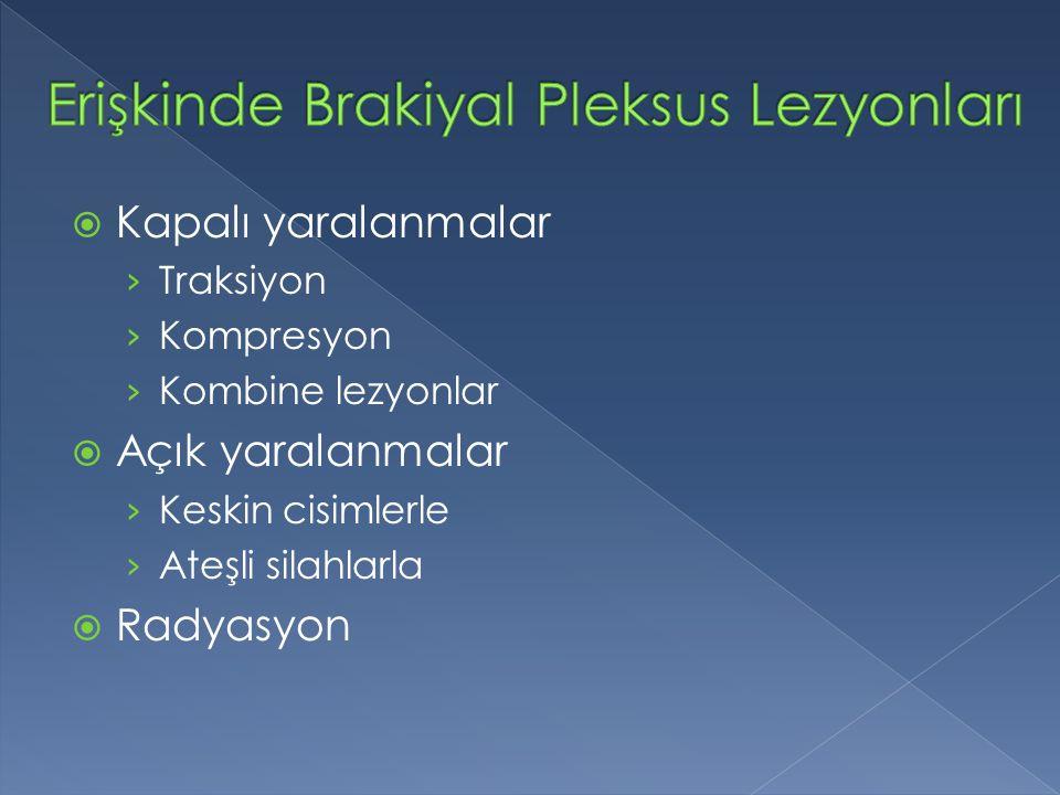 Erişkinde Brakiyal Pleksus Lezyonları
