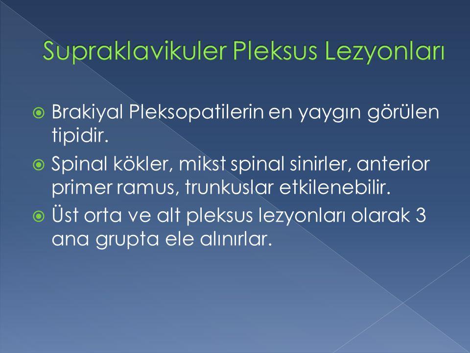 Supraklavikuler Pleksus Lezyonları