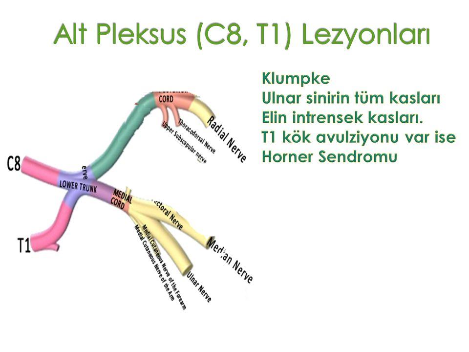Alt Pleksus (C8, T1) Lezyonları