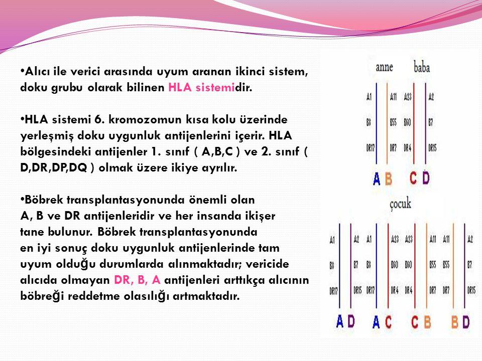 Alıcı ile verici arasında uyum aranan ikinci sistem, doku grubu olarak bilinen HLA sistemidir.