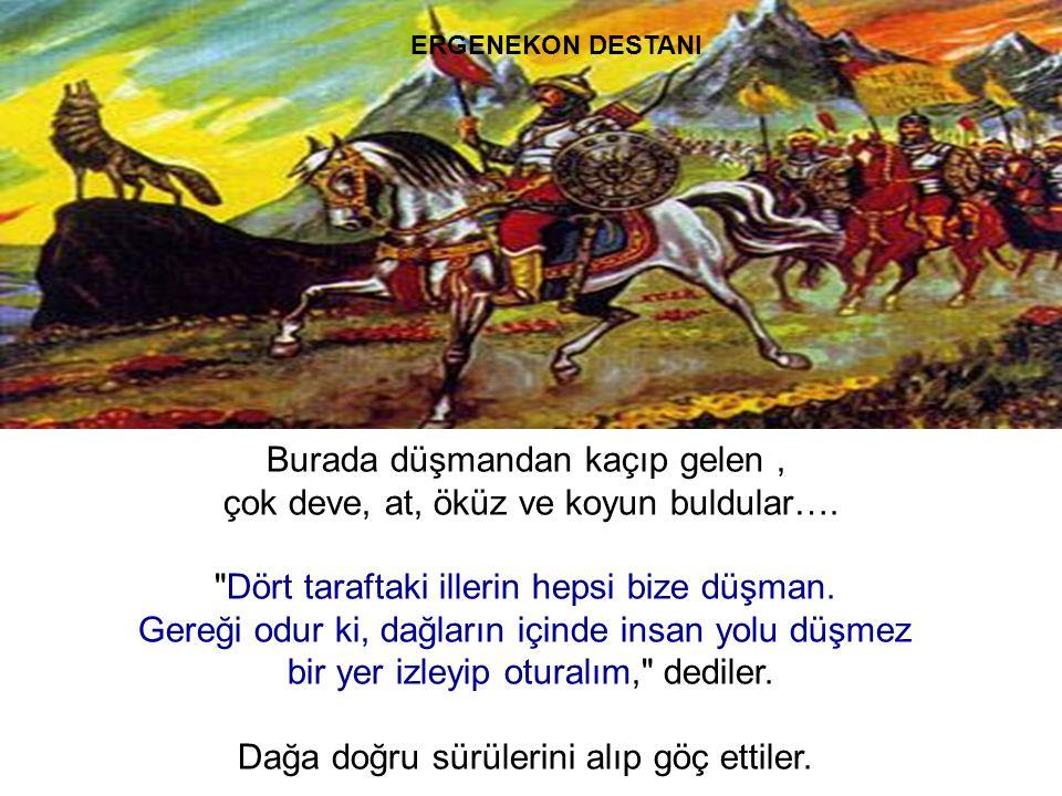 Burada düşmandan kaçıp gelen , çok deve, at, öküz ve koyun buldular….