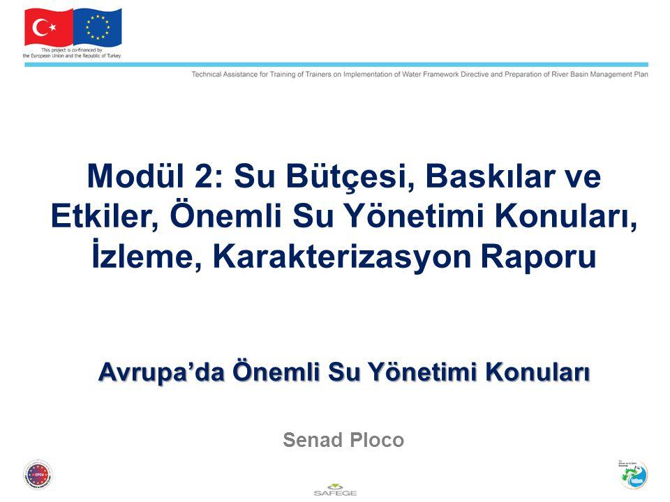 Modül 2: Su Bütçesi, Baskılar ve Etkiler, Önemli Su Yönetimi Konuları, İzleme, Karakterizasyon Raporu Avrupa'da Önemli Su Yönetimi Konuları