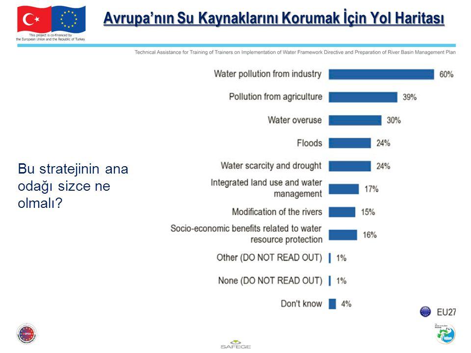 Avrupa'nın Su Kaynaklarını Korumak İçin Yol Haritası