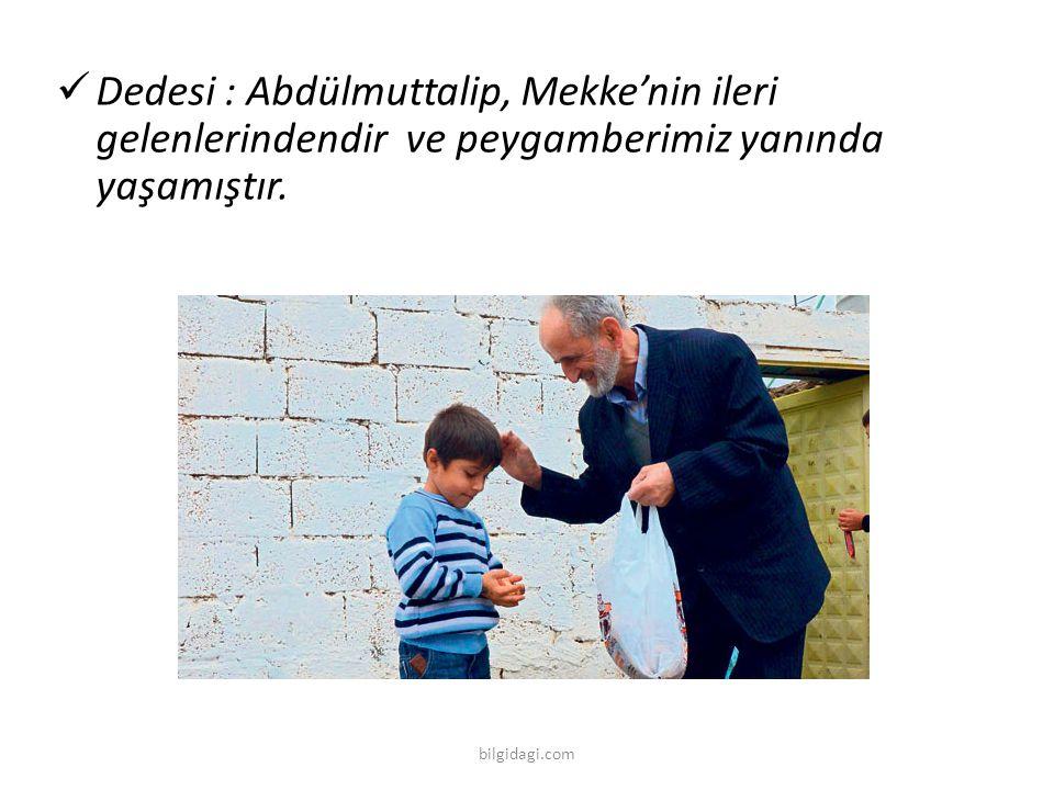 Dedesi : Abdülmuttalip, Mekke'nin ileri gelenlerindendir ve peygamberimiz yanında yaşamıştır.