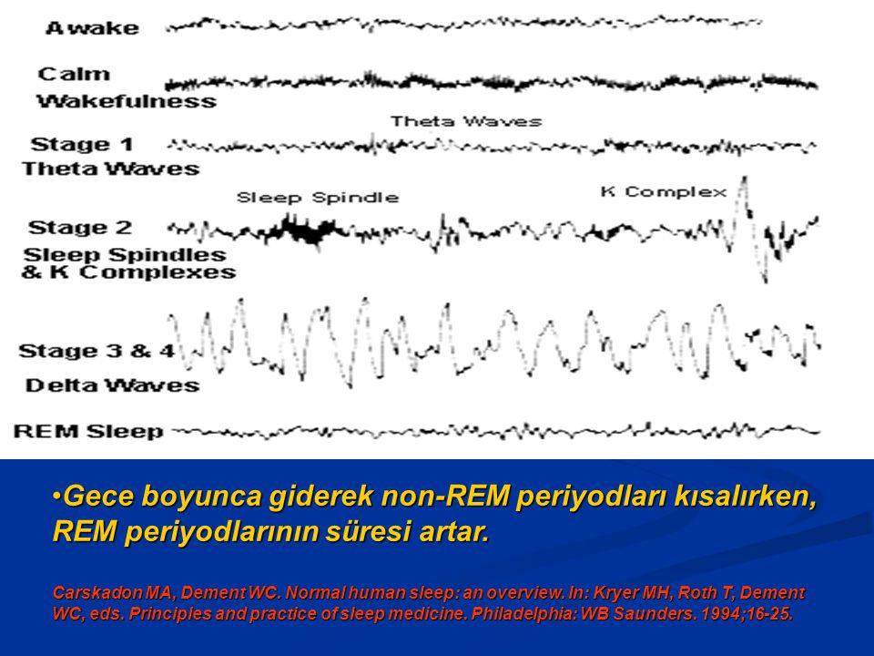 Gece boyunca giderek non-REM periyodları kısalırken, REM periyodlarının süresi artar.