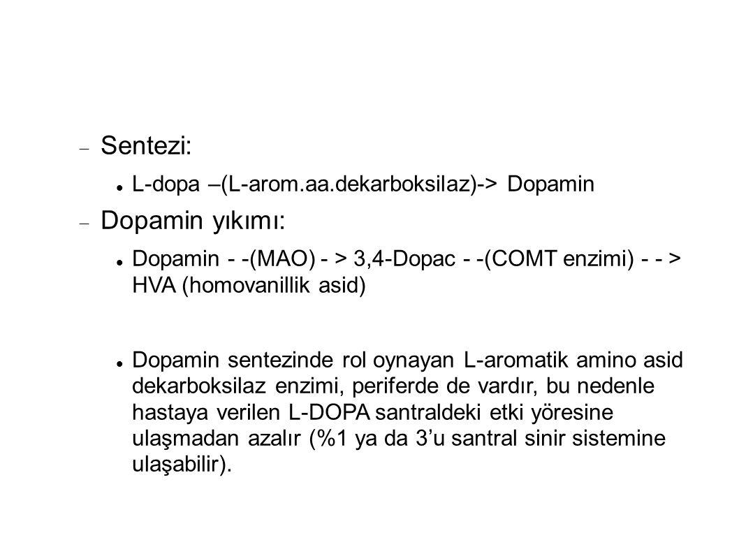 Sentezi: Dopamin yıkımı: