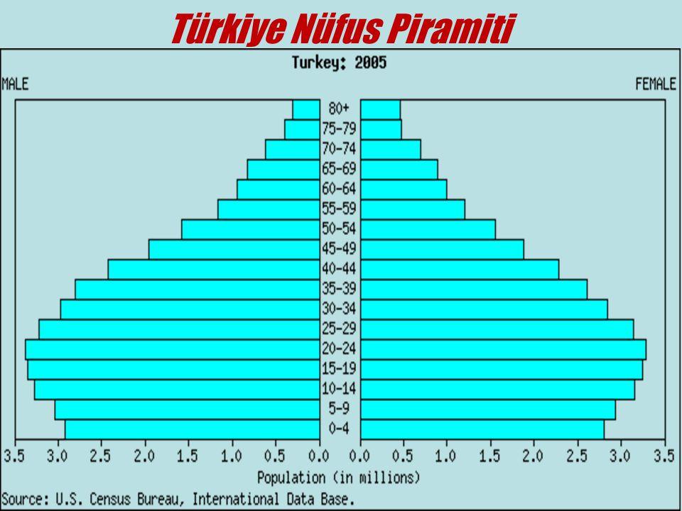 Türkiye Nüfus Piramiti