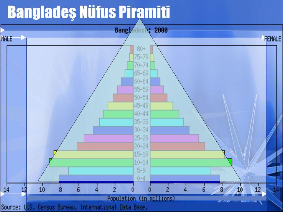 Bangladeş Nüfus Piramiti