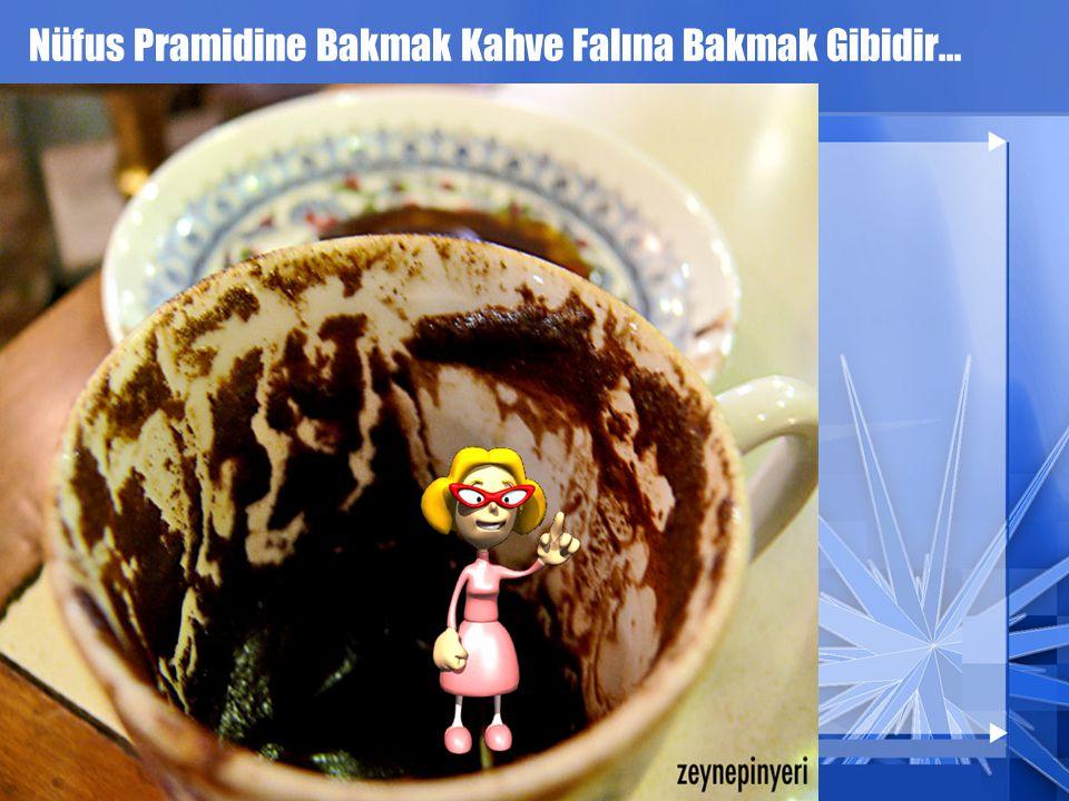 Nüfus Pramidine Bakmak Kahve Falına Bakmak Gibidir...