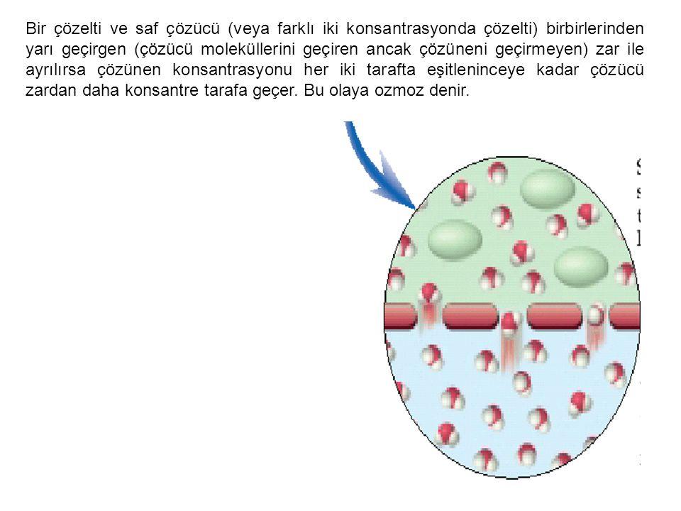 Bir çözelti ve saf çözücü (veya farklı iki konsantrasyonda çözelti) birbirlerinden yarı geçirgen (çözücü moleküllerini geçiren ancak çözüneni geçirmeyen) zar ile ayrılırsa çözünen konsantrasyonu her iki tarafta eşitleninceye kadar çözücü zardan daha konsantre tarafa geçer.