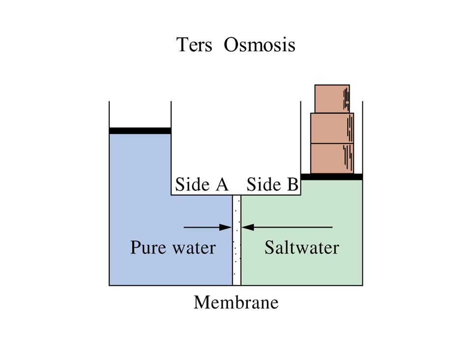 Ters Osmosis