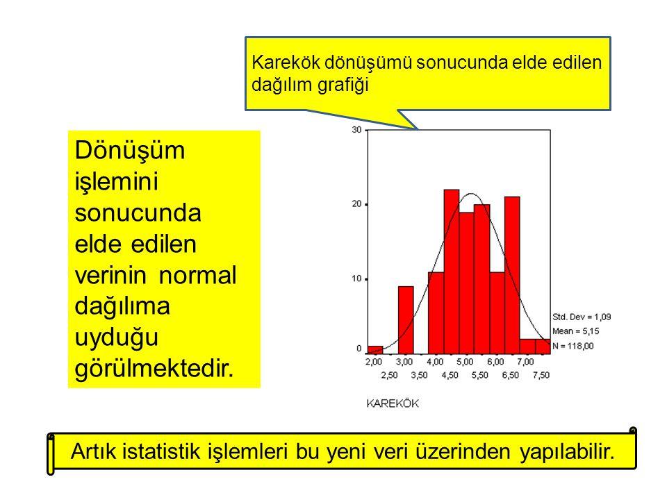 Artık istatistik işlemleri bu yeni veri üzerinden yapılabilir.