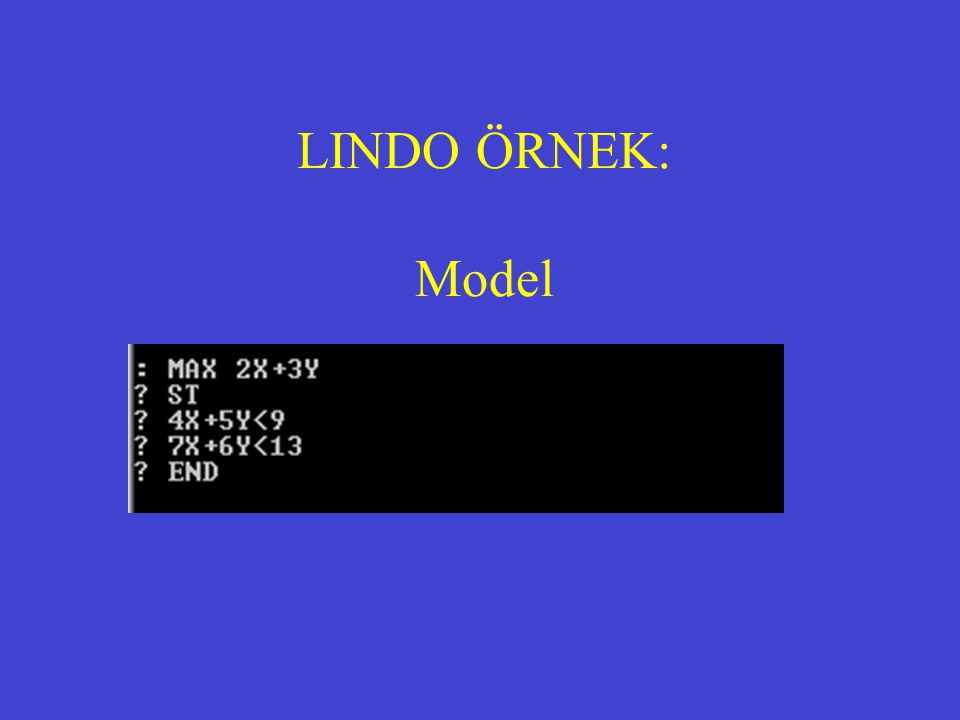 LINDO ÖRNEK: Model
