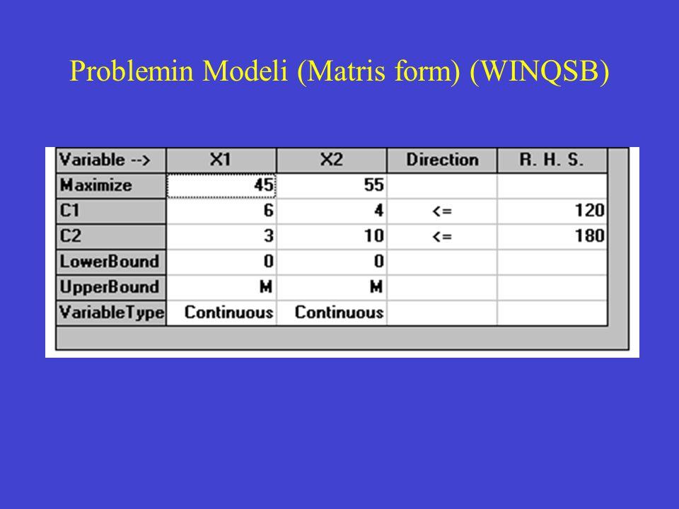 Problemin Modeli (Matris form) (WINQSB)