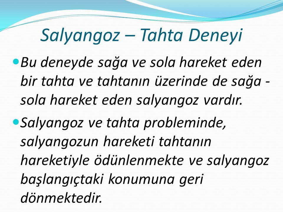 Salyangoz – Tahta Deneyi