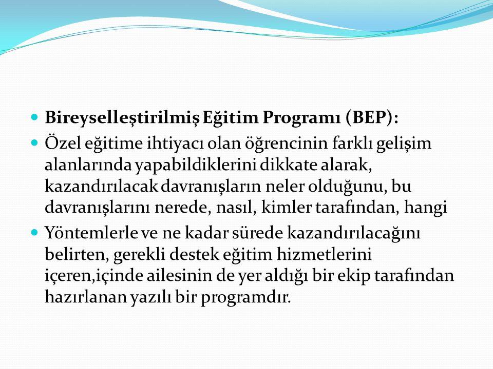 Bireyselleştirilmiş Eğitim Programı (BEP):