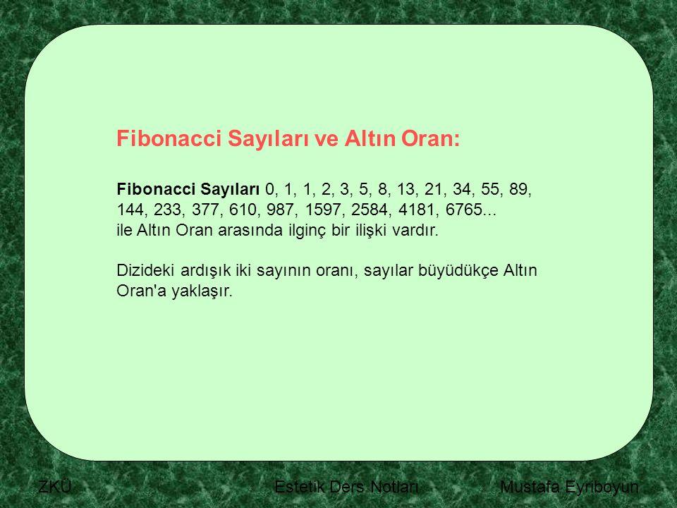 Fibonacci Sayıları ve Altın Oran: