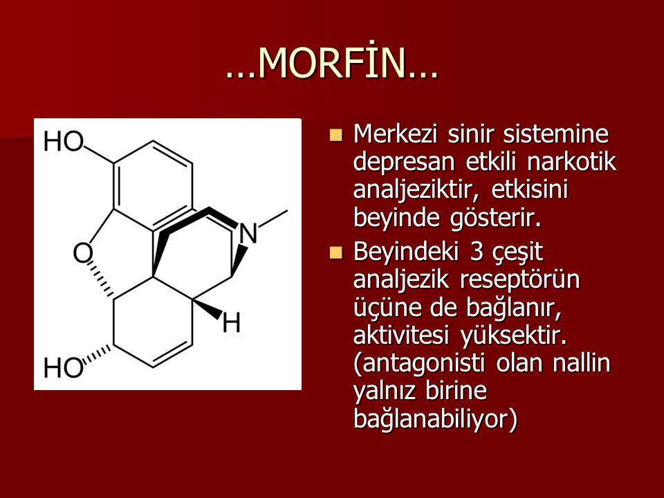 …MORFİN… Merkezi sinir sistemine depresan etkili narkotik analjeziktir, etkisini beyinde gösterir.