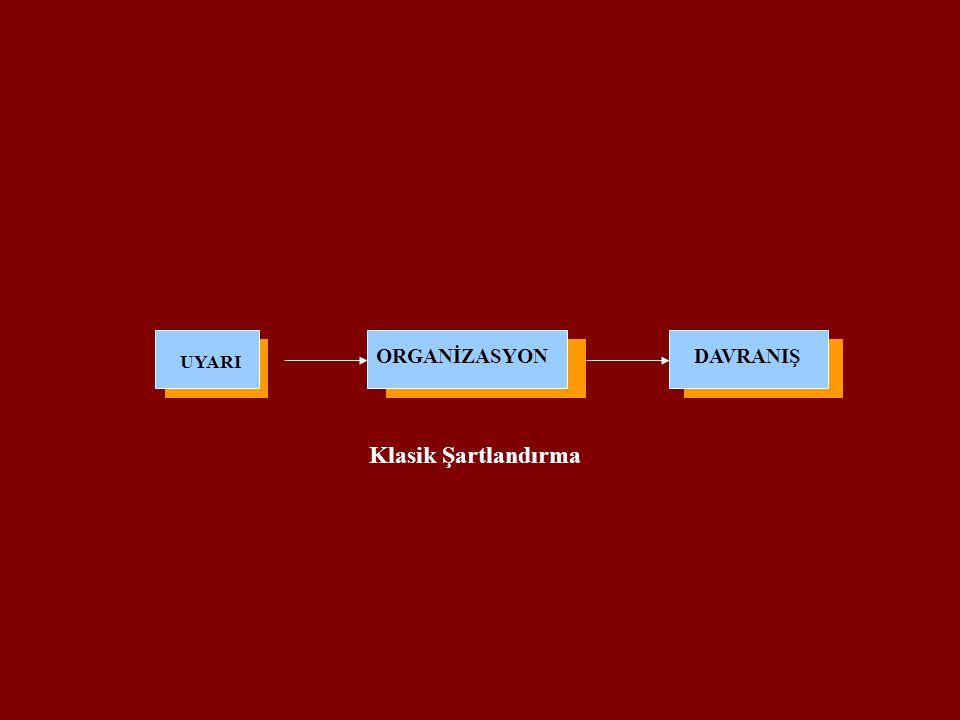 ORGANİZASYON DAVRANIŞ UYARI Klasik Şartlandırma