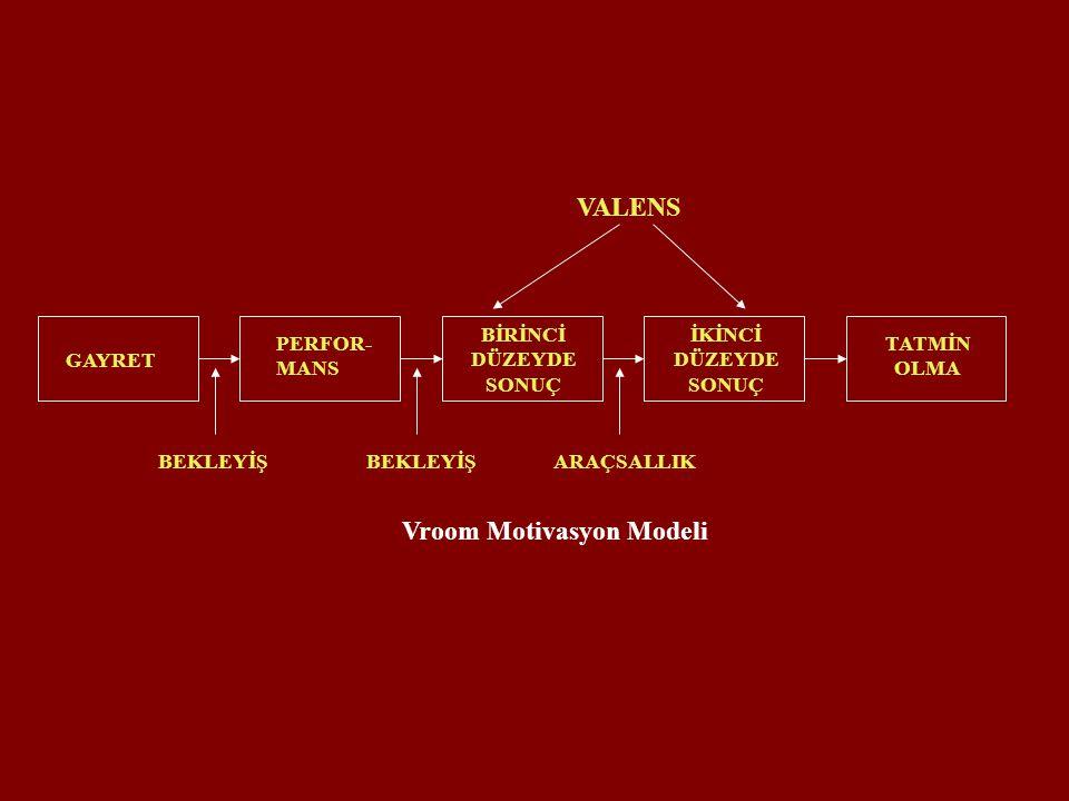 Vroom Motivasyon Modeli