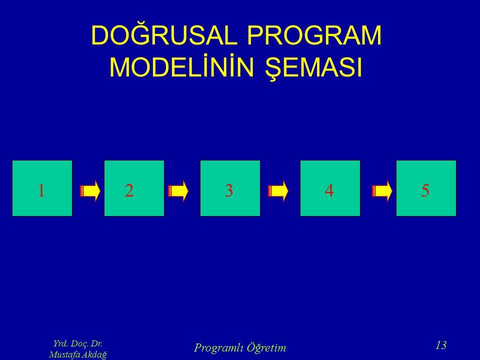 DOĞRUSAL PROGRAM MODELİNİN ŞEMASI