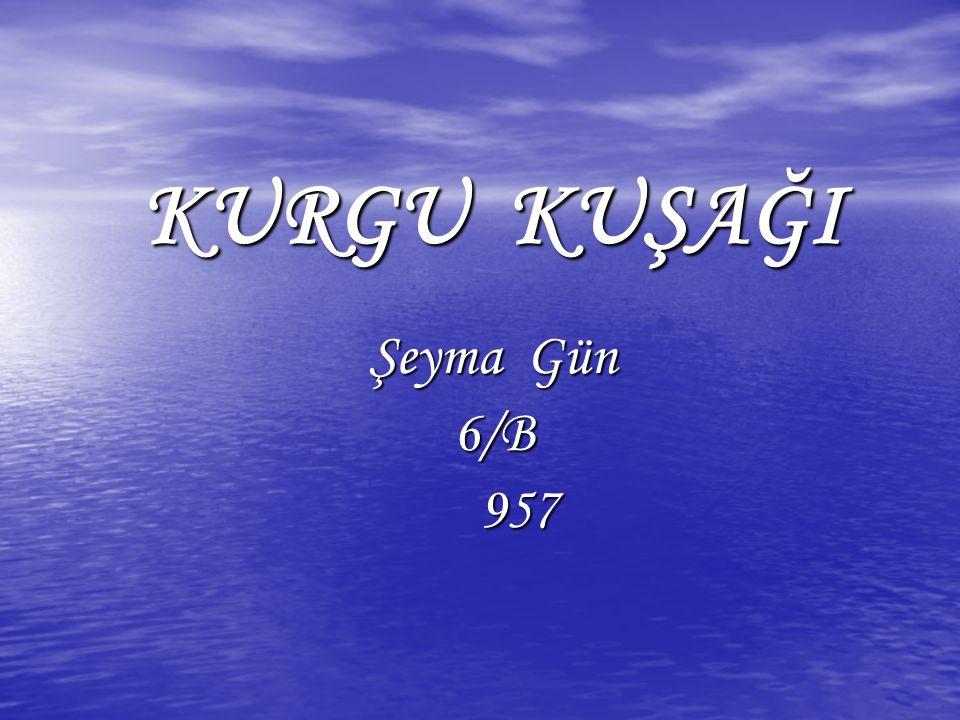 KURGU KUŞAĞI Şeyma Gün 6/B 957