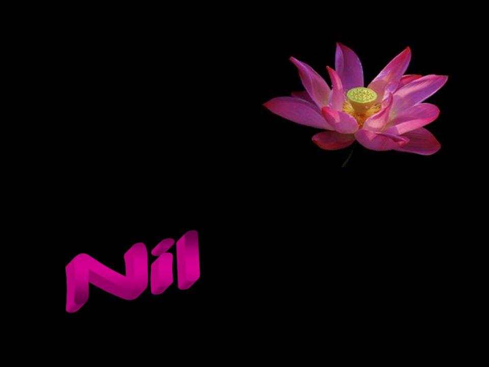 Nil Lütfen emeğe saygı… Hiç bir yerini değiştirmeden yollayın…