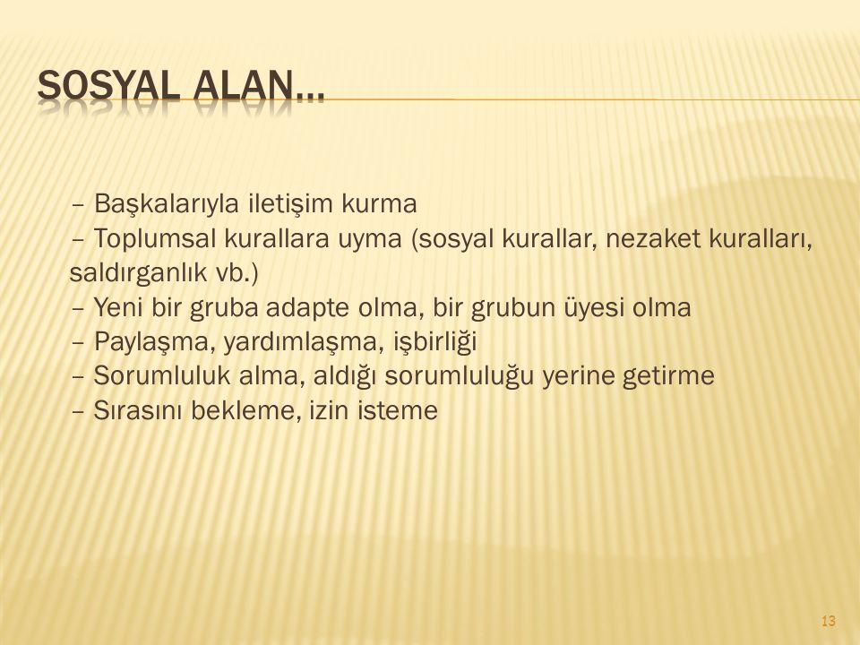 Sosyal Alan…