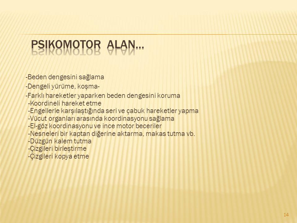 Psikomotor Alan…
