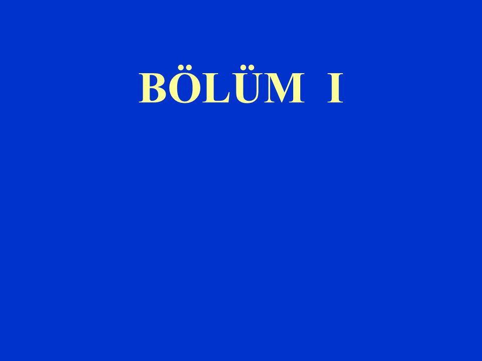 BÖLÜM I