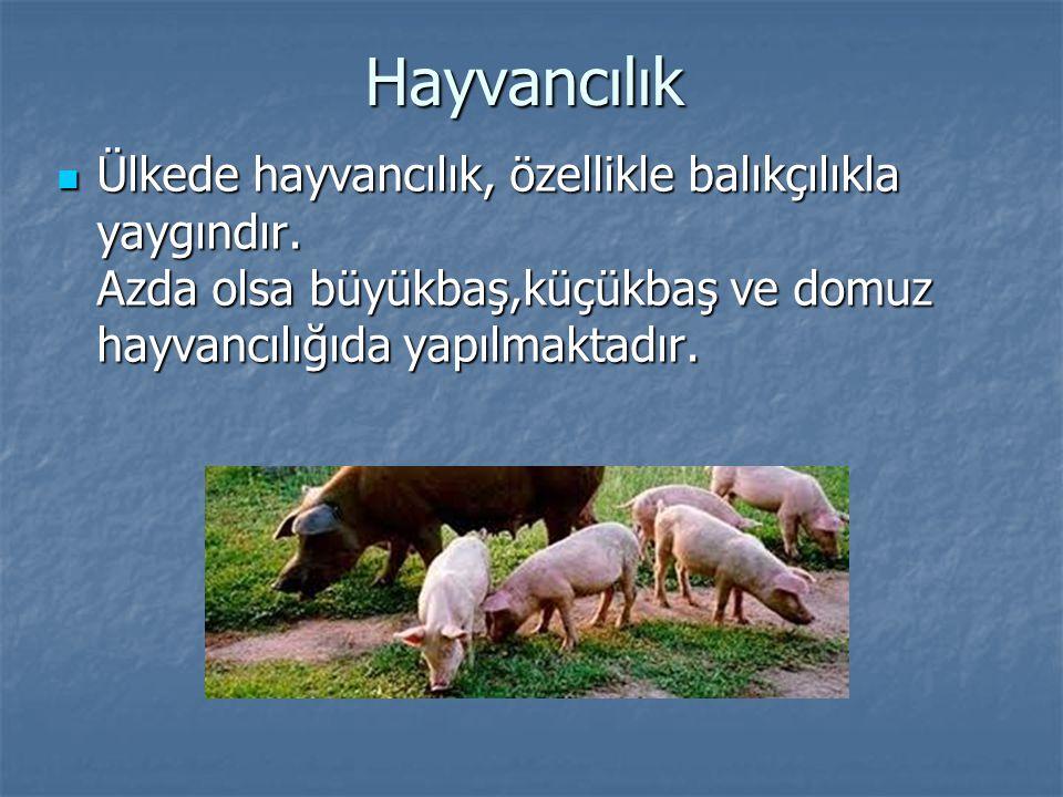 Hayvancılık Ülkede hayvancılık, özellikle balıkçılıkla yaygındır.