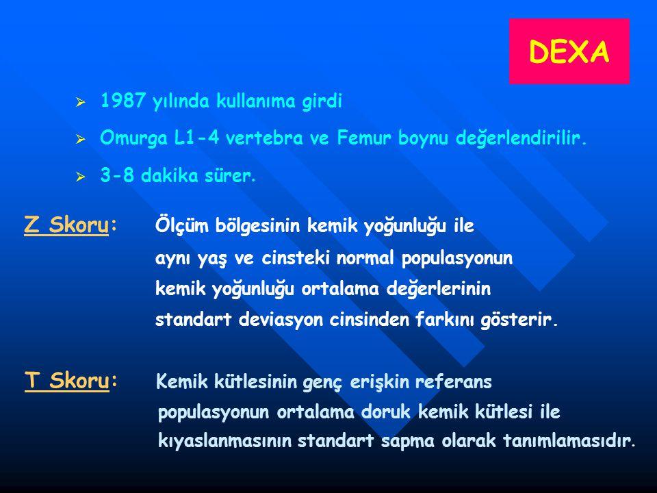 DEXA Z Skoru: Ölçüm bölgesinin kemik yoğunluğu ile