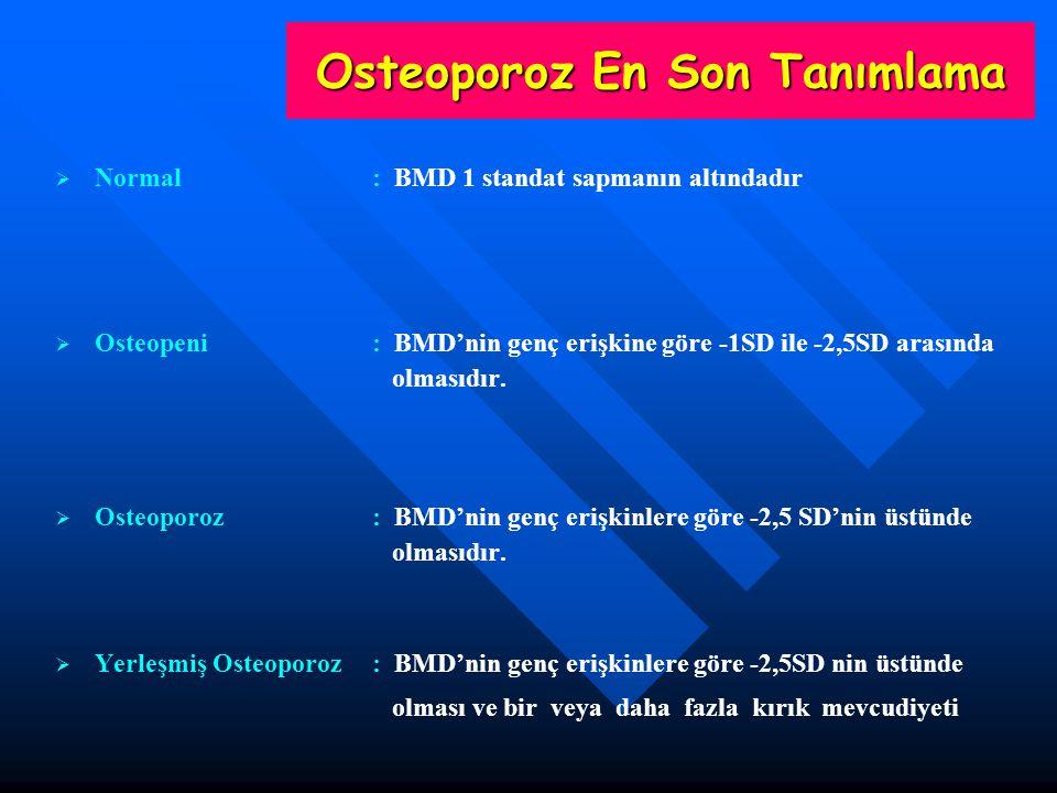 Osteoporoz En Son Tanımlama